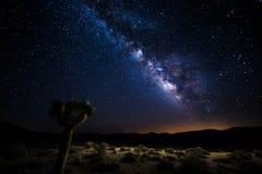Death Valley under Vintergatan Arkivfoto