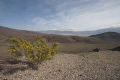 Death- ValleyNationalpark Lizenzfreie Stockbilder