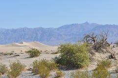 Death- ValleySanddünen, Kalifornien Lizenzfreie Stockfotografie