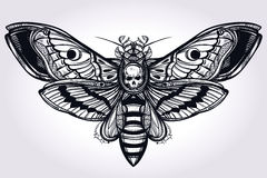 Deaths head hawk moth hand drawn silhouette. Stock Image