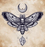 Deaths head hawk moth with moons and stones. Royalty Free Stock Photos