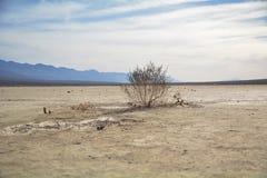 Deathvalleywoestijn op hoge temperatuur stock afbeeldingen