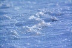 Deatil di terra e di neve congelate a Kozakov Fotografia Stock