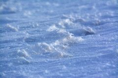 Deatil of frozen land and snow at Kozakov Stock Photography