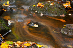 Deatil of stream flow Stock Photography