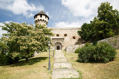 Deatils from the medival architecture of Budapest Castle Hungary stock images