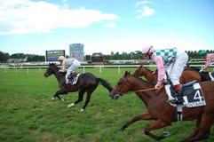 Deauville horse races Stock Photo