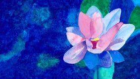 Deb Flower Fotografering för Bildbyråer