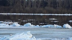 Debacle. Ice drift on river. Ice floats spring or early winter stock video