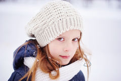 debajo de las escamas de la nieve Foto de archivo libre de regalías