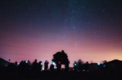 Debajo del árbol Foto de archivo libre de regalías