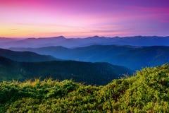 Debajo del cielo púrpura coloque las colinas de la montaña cubiertas con los pinos del arrastramiento Imagen de archivo