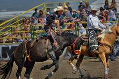 Debandada de Strathmore, Alberta, Canadá Fotos de Stock