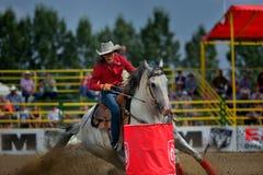 Debandada de Strathmore, Alberta, Canadá Foto de Stock Royalty Free