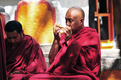 Debatendo monges em Tibet Fotografia de Stock Royalty Free
