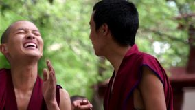 Debates tibetanos das monges no monastério dos soros video estoque