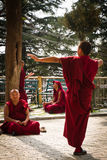 Debating Buddhist monks, Dalai Lama temple, McLeod Ganj, India Royalty Free Stock Photo