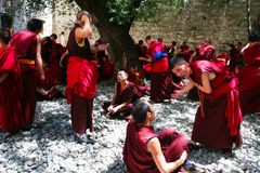 Debating monks. Lama are debating mutually  at Sera Monastery, Tibet Stock Image