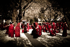 Debating monks of Sera monastery, Lhasa, Tibet Royalty Free Stock Photos