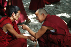 Debating monks in Tibet. Two monks or lamas debating for the buddhism in a famous lamasery in Tibet Stock Images