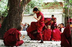 Debating monks in Tibet. Monks or lamas debating for the buddhism in a famous lamasery in Tibet Royalty Free Stock Image