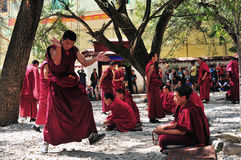 Debating monks in Tibet. Tibetan monks at Sera monastery debating in the courtyard Royalty Free Stock Photography
