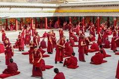 Debating Monks. Monks debating at the Tongren buddhist temple in Qinghai, China Stock Image
