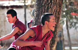 debattera monks tibet Royaltyfri Bild