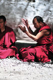 debattera monks tibet Royaltyfri Foto