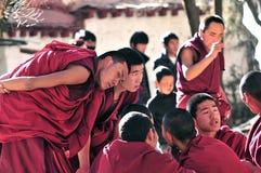 Debattieren der Mönche in Tibet Stockbild