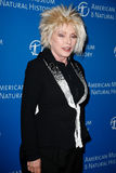 Debbie Harry. NEW YORK-NOV 21; Singer Debbie Harry attends the American Museum of Natural History's 2013 Museum Gala at American Museum of Natural History on Stock Photo