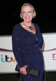 Deborah Meaden. Arriving for The Sun Military Awards, at Greenwich Maritime Museum, London. 11/12/2013 Picture by: Alexandra Glen / Featureflash Royalty Free Stock Photo