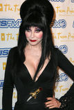 """Elvira. At Trevor Project's """"Cracked Xmas 7"""" honoring Debra Messing and Megan Mullally at The Wiltern LG, Los Angeles, CA. 12-05-04 Stock Images"""