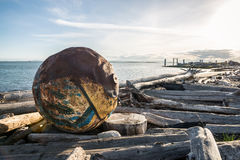Debree do oceano em Vancôver Foto de Stock Royalty Free