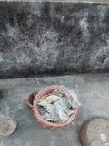 debris стоковые изображения rf