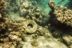 Debris on the bottom of the Red sea corals in Egypt Stock Photo