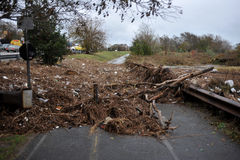 Debris litters the ground in Brooklyn, New York. BROOKLYN, NY - OCTOBER 29: Debris litters the ground in the Sheapsheadbay neighborhood due to flooding from Stock Photography
