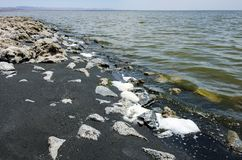 Debris, rocks and black sand wash up on the shores of the Salton Sea in California desert stock images