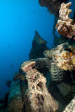 Debris on the SS Thistlegorm. Royalty Free Stock Images