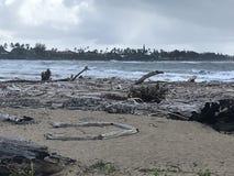 Debris Strewn on Beach in Kauai after Flooding royalty free stock image