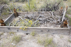 Debris on unmarked grave in Bodie cemetery Stock Photography