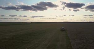 Debulhadora poderosa da ceifeira da vista superior entre o campo de trigo maduro filme