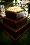 Decadent chocolate groom's cake. An image of a decadent chocolate groom's cake topped with white chocolate golf balls Stock Photos