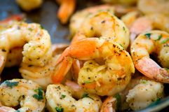 Decadent Sauteed Seasoned Shrimp Stock Image