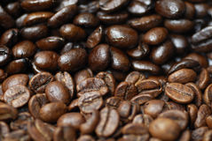Decaffinated and caffinated coffee beans. Royalty Free Stock Photography