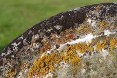Decaimiento de la piedra sepulcral en colores del liquen y del musgo imagen de archivo libre de regalías