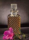 Decantatore del whiskey fotografie stock