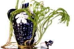 Decanter with lycopodium Stock Photos