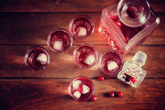 Decanter and shot with natural cranberry and vodka Stock Photos