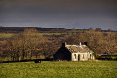 Decay cottage in rural ireland countryside. Photo of decay cottage in rural ireland countryside Royalty Free Stock Image